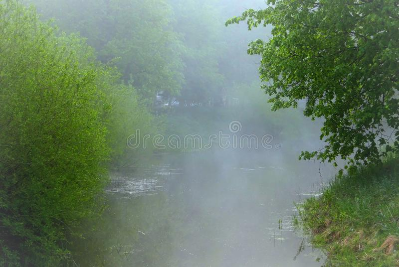 Foggy morning in Lithuania . City park royalty free stock photos