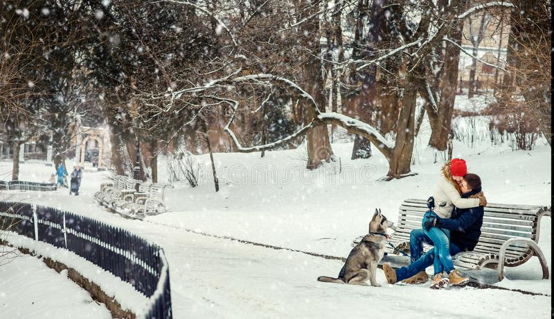 Sibérien gai heureux Husky Dog Sitting Bench Snow de couples étreignant l'hiver de chutes de neige photo libre de droits