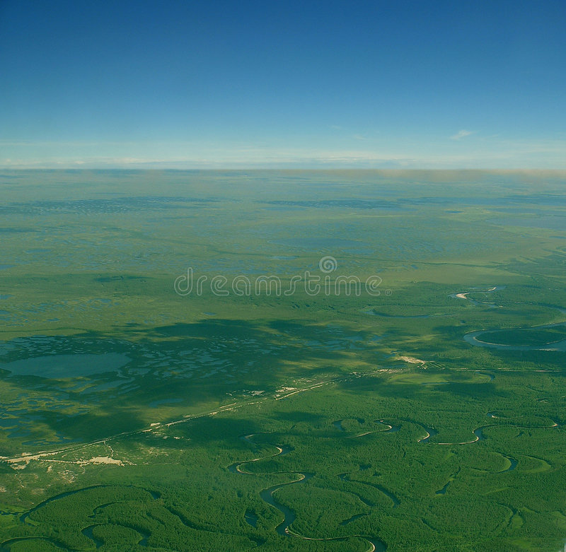 Download Siberia stock photo. Image of airview, view, tree, birds - 4363006