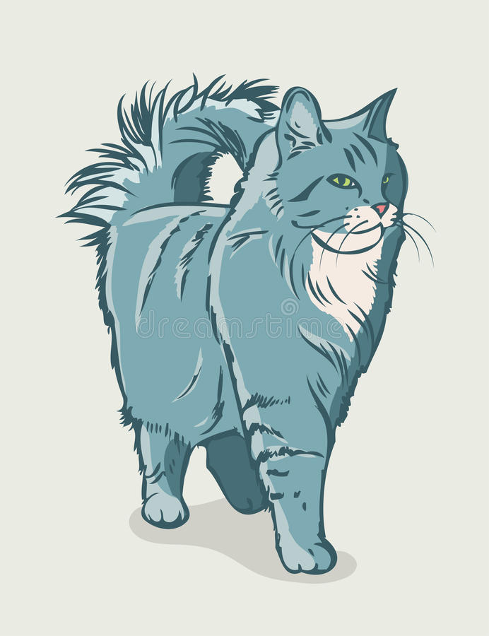 Free Siberian Cat Royalty Free Stock Photography - 29491397