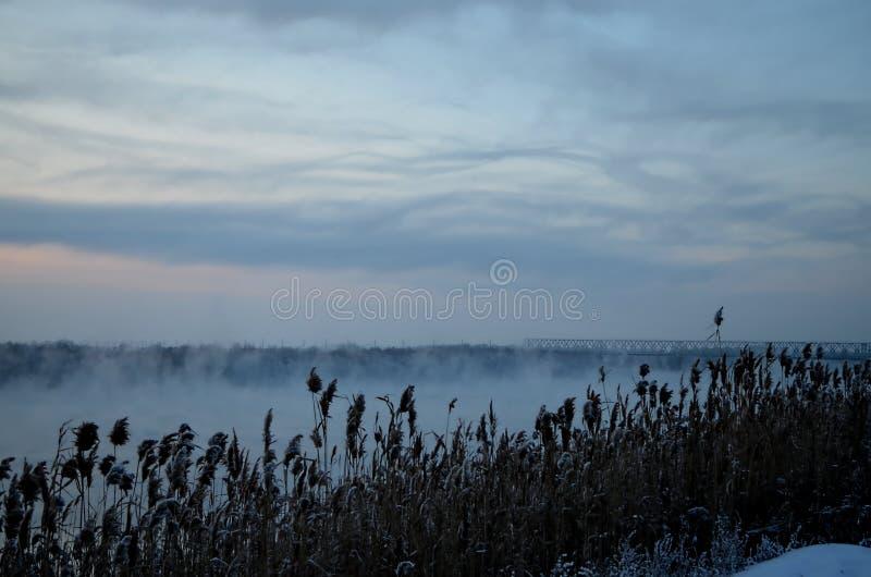 Siberian flod på solnedgången royaltyfri bild