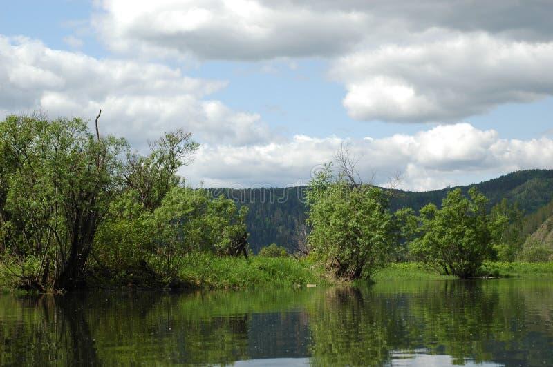 The Siberian mountain river Mana royalty free stock image