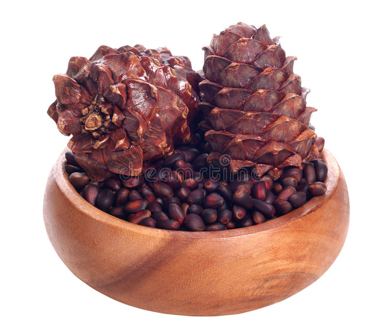 Download Siberian Pine Cone And Siberian Pine Nuts Stock Images - Image: 21946404