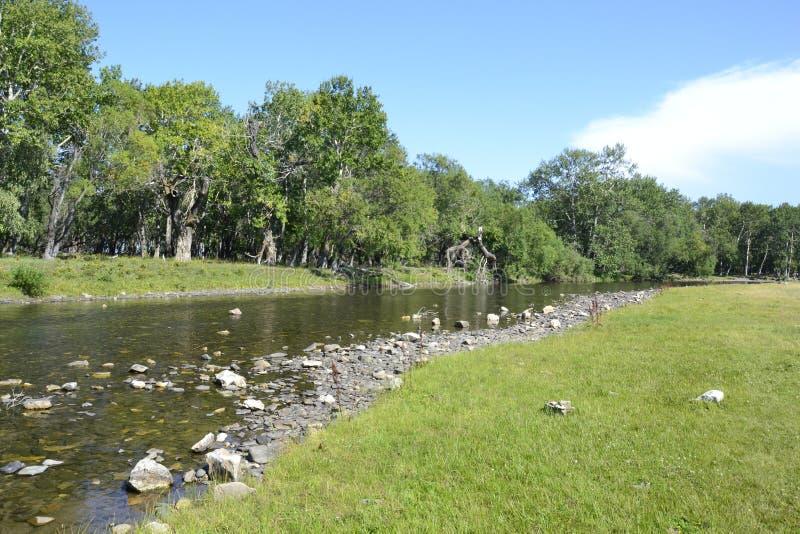 Siberian River near Baikal Lake on Summer royalty free stock image