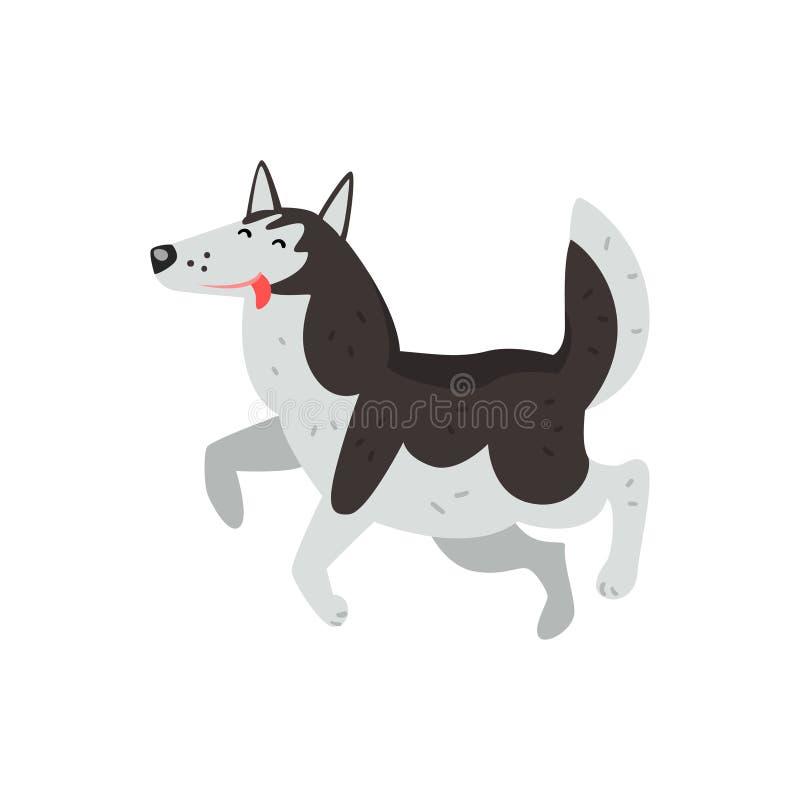 Siberian skrovlig hundteckenspring som ut sätter hans vektorillustrationer för tunga på en vit bakgrund royaltyfri illustrationer