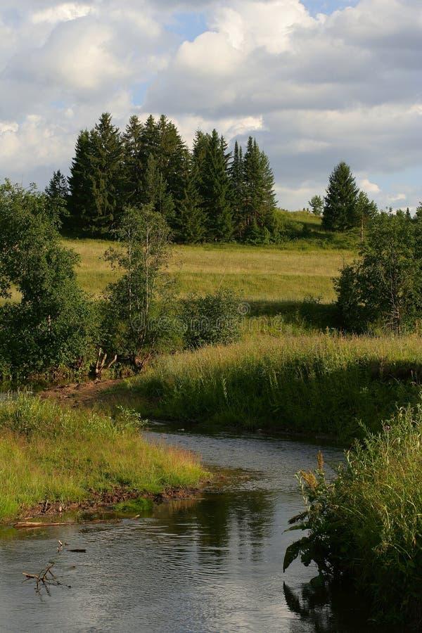 Siberian summer stock image