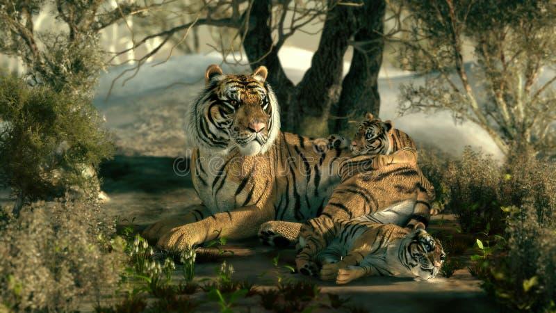 Siberian Tiger Family, 3d CG vector illustration