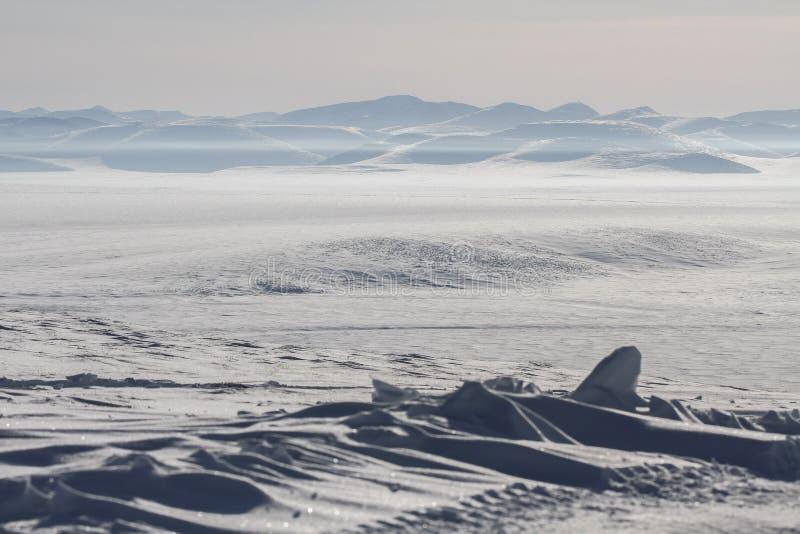Siberian tundra stock image