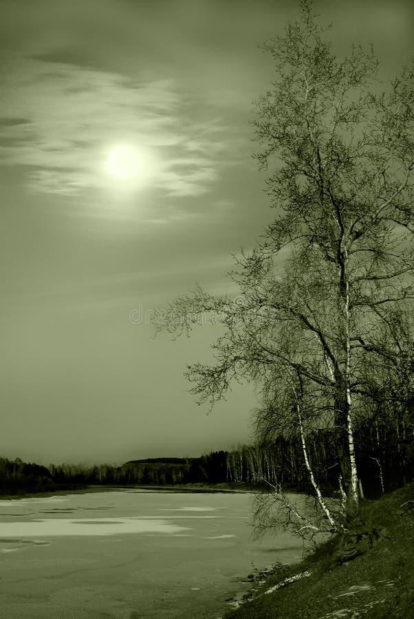 siberian vinter för flod royaltyfri fotografi