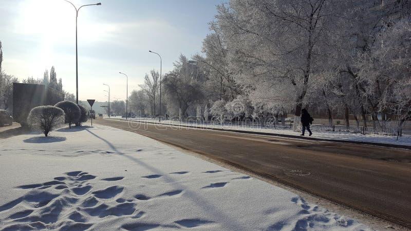 Siberian vinter i staden arkivbilder