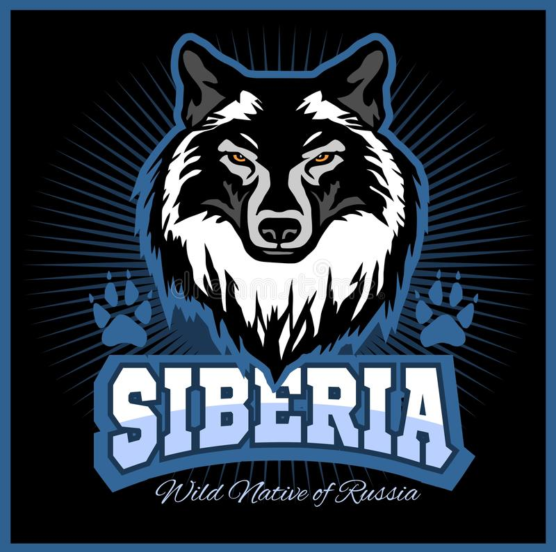 Siberian Wolf - a wolf head on the black background. Russian Siberia - vector emblem. Wild nature of Russia stock illustration