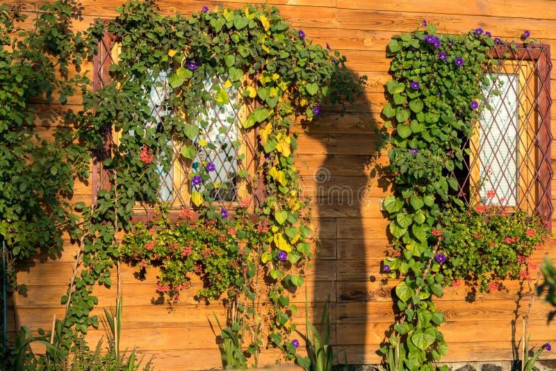 SIBIEL, TRANSYLVANIA/ROMANIA - 17 DE SETEMBRO: Luz solar o da manhã fotografia de stock