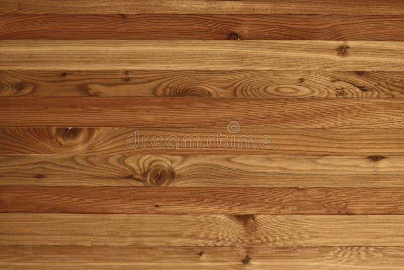 Sibirica van texturen larix stock foto's