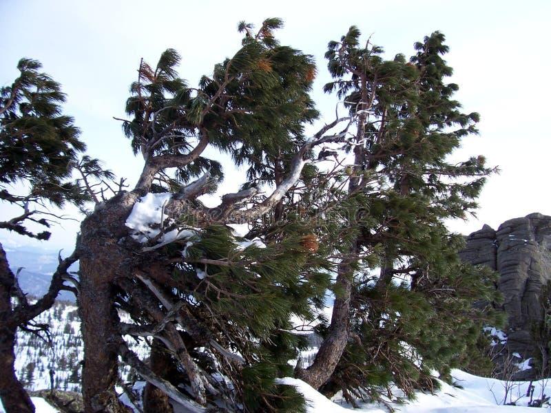 Sibirien, die Stärke der Berge stockbild