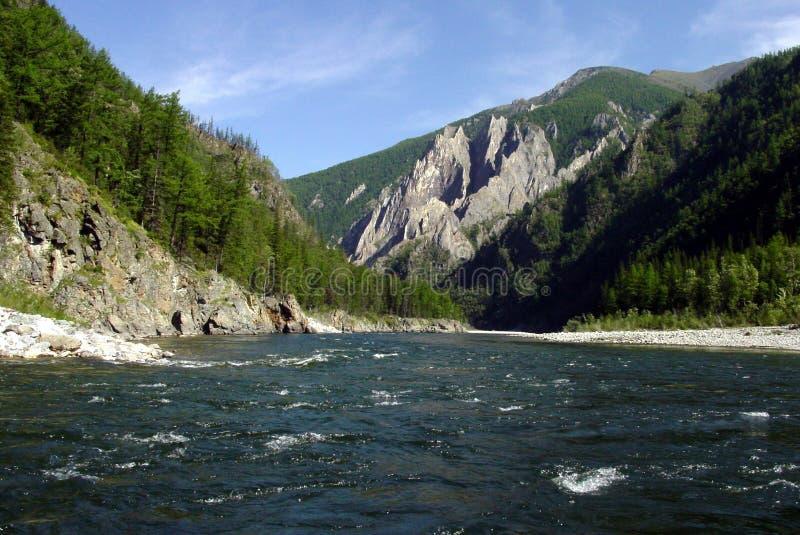 Sibirien, Gebirgsfluss und Wald auf einem Felsen stockfotografie