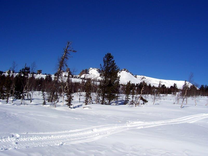 Sibirien styrkan av bergen royaltyfria bilder