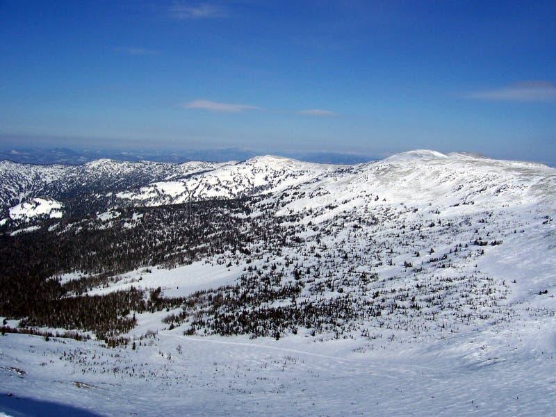 Sibirien styrkan av bergen fotografering för bildbyråer