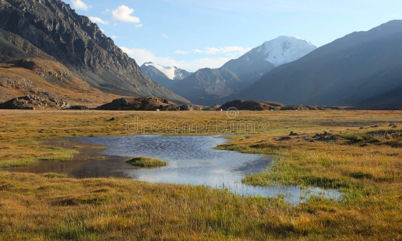 Sibirische alpine Tundra stockfoto