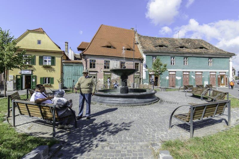 Sibiu, romania, Europa, escorçando imagem de stock royalty free