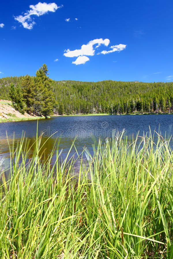 Sibley Lake Bighorn National Forest. Summer day at Sibley Lake in the Bighorn National Forest of Wyoming stock photo