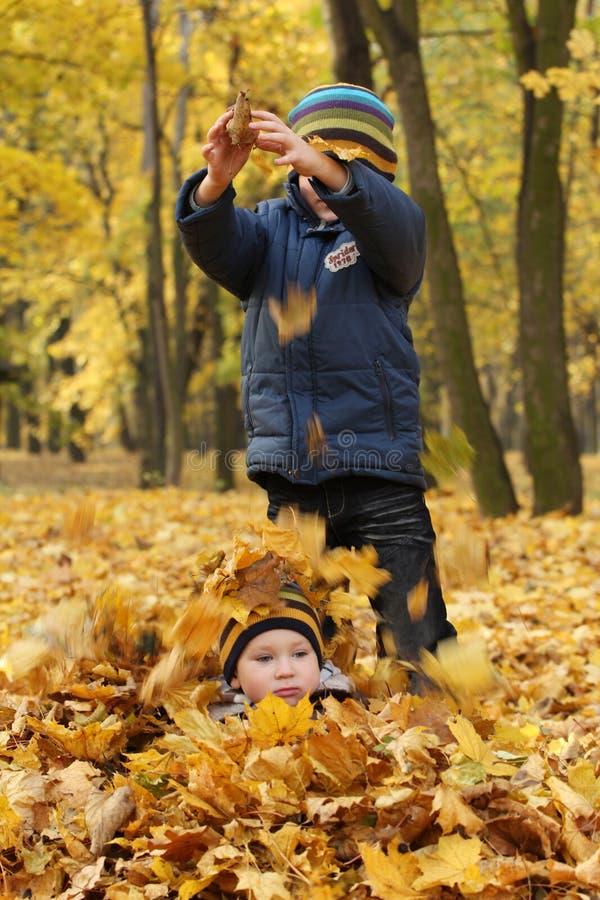 sibling två för leaves för höstbröder lycklig royaltyfria bilder