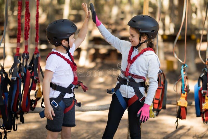 Siblings die hoogte vijf geven aan elkaar in park royalty-vrije stock fotografie