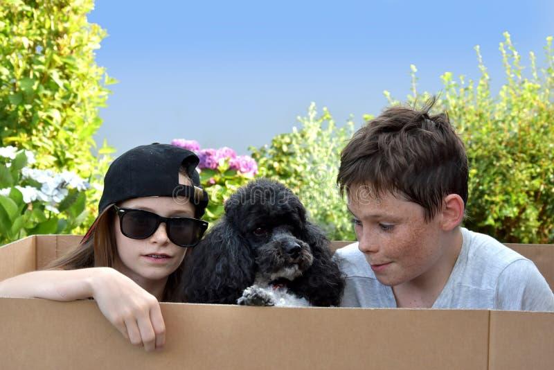 Siblings en hond royalty-vrije stock afbeeldingen