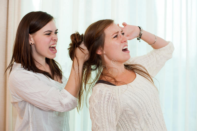 Download Siblings fighting stock photo. Image of issues, friend - 25437612