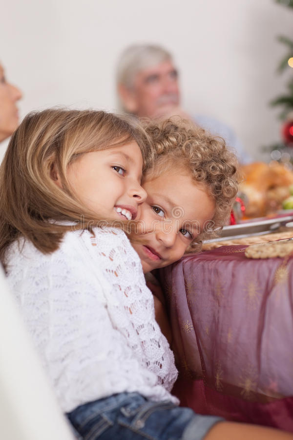 Download Siblings Joking With Each Other At Christmas Stock Image - Image: 27803993