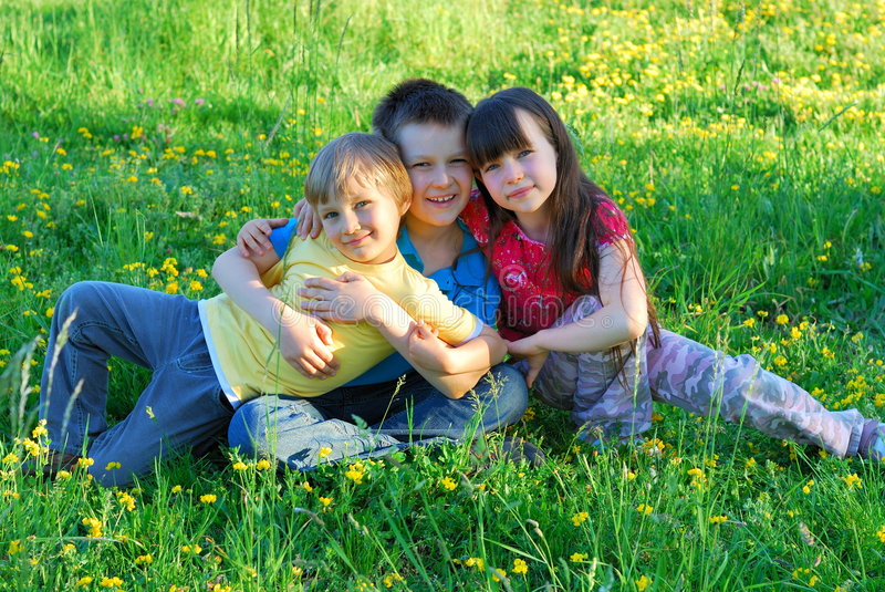 Siblings in a meadow royalty free stock photos