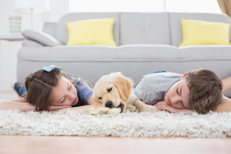 Siblings sleeping with dog on rug. At home royalty free stock photo