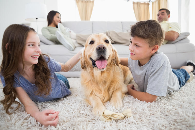 Siblings stroking dog on rug while parents relaxing on sofa. Cute siblings stroking dog on rug while parents relaxing on sofa at home royalty free stock photos