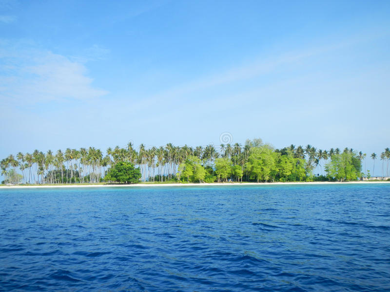 Download Sibuan Island with trees stock photo. Image of bright - 28277108