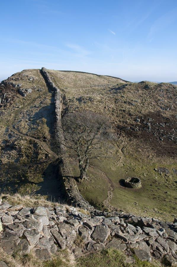 Sicômoro Gap da parede de Hadrians foto de stock royalty free