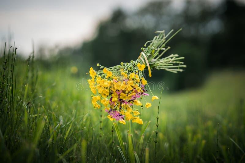 Sich hin- und herbewegender schöner Blumenstrauß einer Sommerwiese stockfotografie