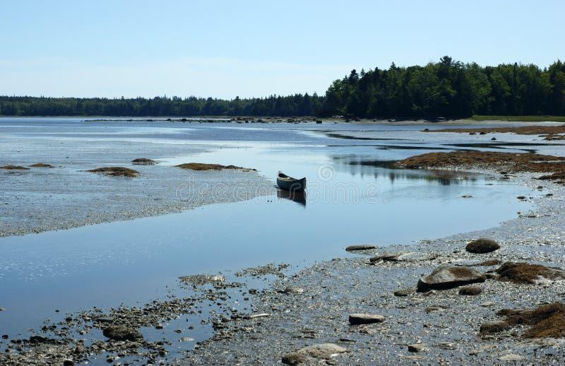 Sich hin- und herbewegendes Kanu nahe Muschelebenen lizenzfreies stockfoto