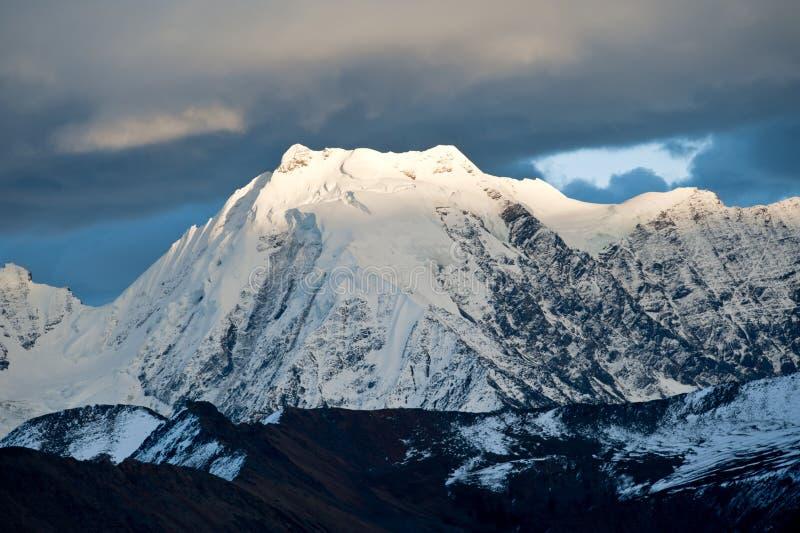 Download Sichuan νομαρχιακών διαμερισμάτ& Στοκ Εικόνες - εικόνα από κίτρινος, βακκινίων: 22785534