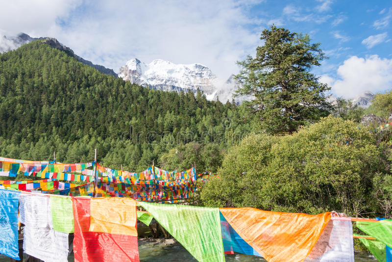 SICHUAN, CHINA - JUL 24 2014: Prayer flag at Yading Nature Reserve. a famous landscape in Daocheng, Sichuan, China. stock photo