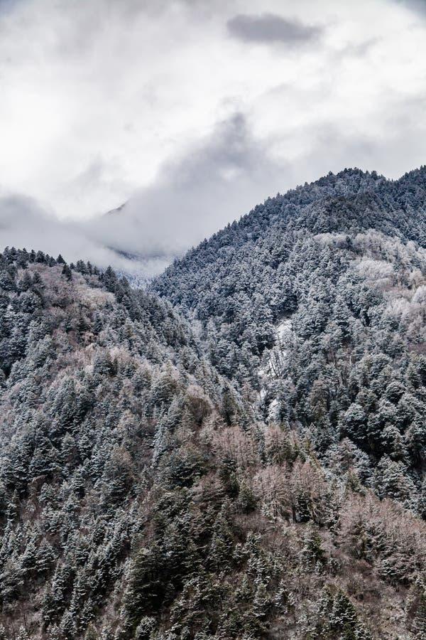 Sichuan occidental, Chine, paysage de Baron Hill avec la neige photos libres de droits