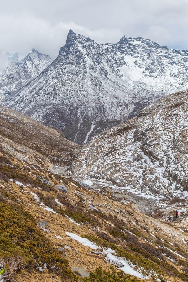 sichuan porcelanowy halny śnieg obrazy royalty free