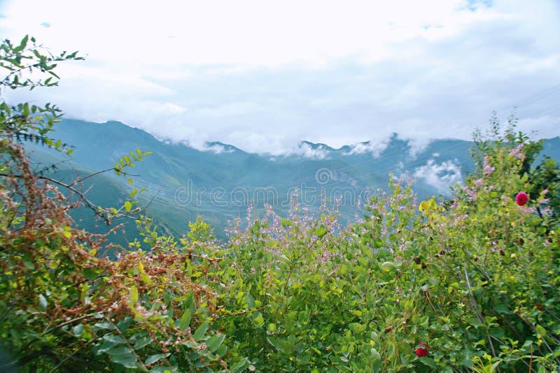 sichuan-tibet highway stock photography