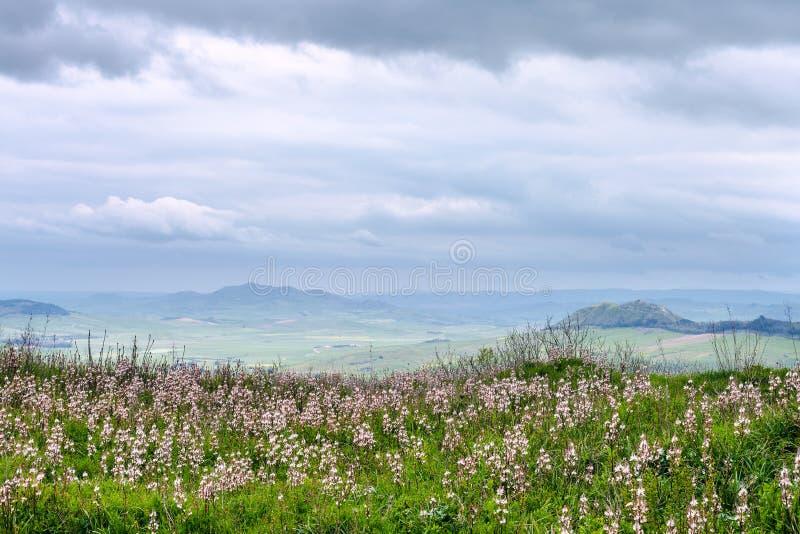 Siciliaans landschap in regenachtige de lentedag stock afbeeldingen
