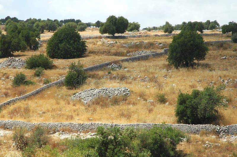Siciliaanse landscape4 stock afbeelding