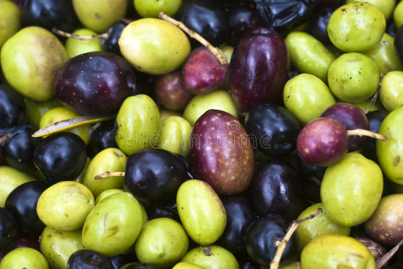 Download Sicilian Olives Background Royalty Free Stock Image - Image: 30443806