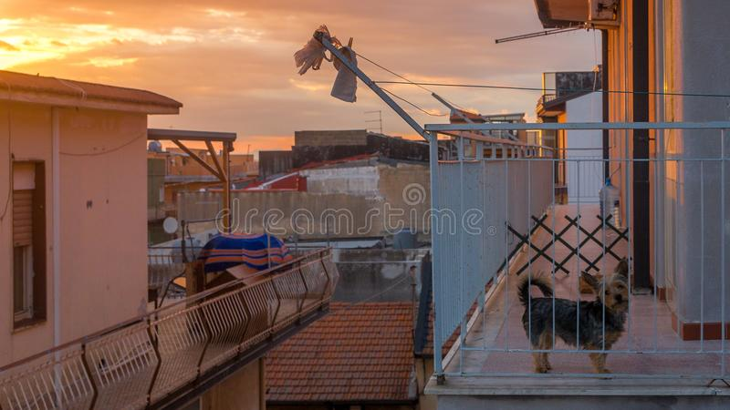 Sicilian Rooftop view in evening royalty free stock image