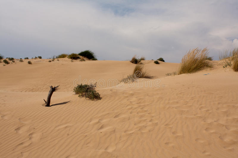 Sicily dune royalty free stock photo