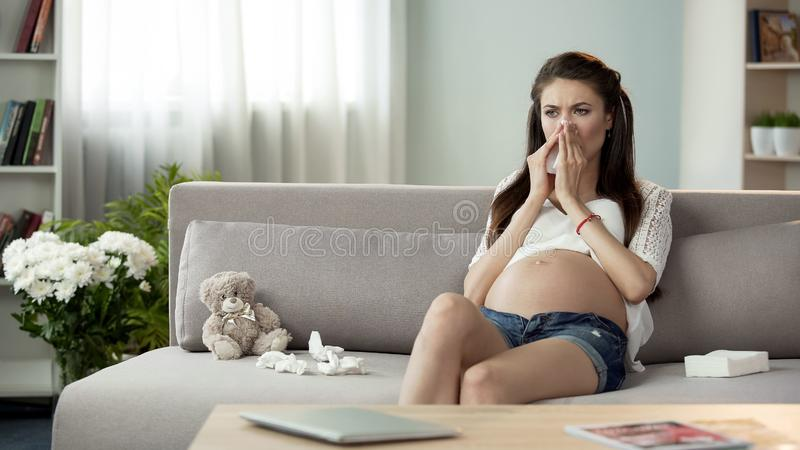 Sick pregnant woman blowing stuffy nose in tissue, feeling bad, cought cold stock photo