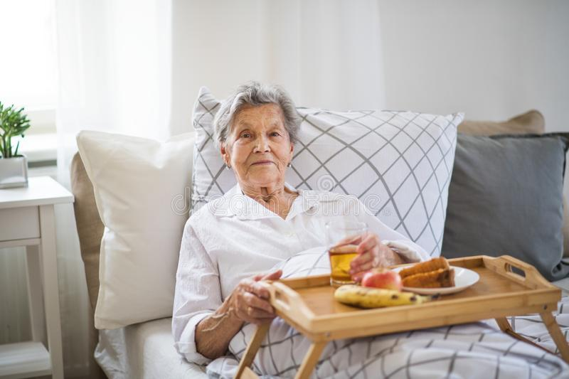A sick senior woman with food on a wooden tray lying in bed at home. An elderly sick senior woman with food on a wooden tray lying in bed at home royalty free stock photo