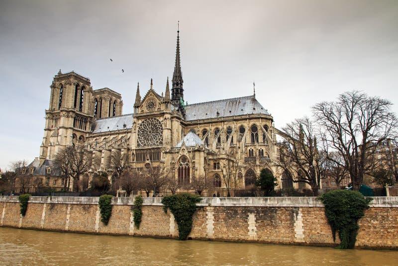 Sida Notre-Dame royaltyfri bild