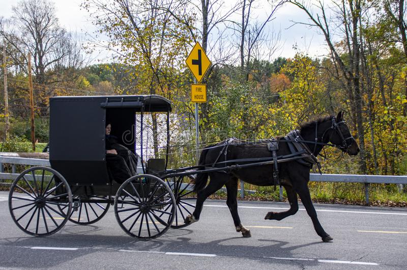 Profile of an  Amish Carriage as it rides through Upper New York State. The side of a black Amish horse carriage as it rides through a small town in Upper New royalty free stock images